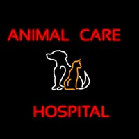 Animal Care Hospital Logo Neontábla